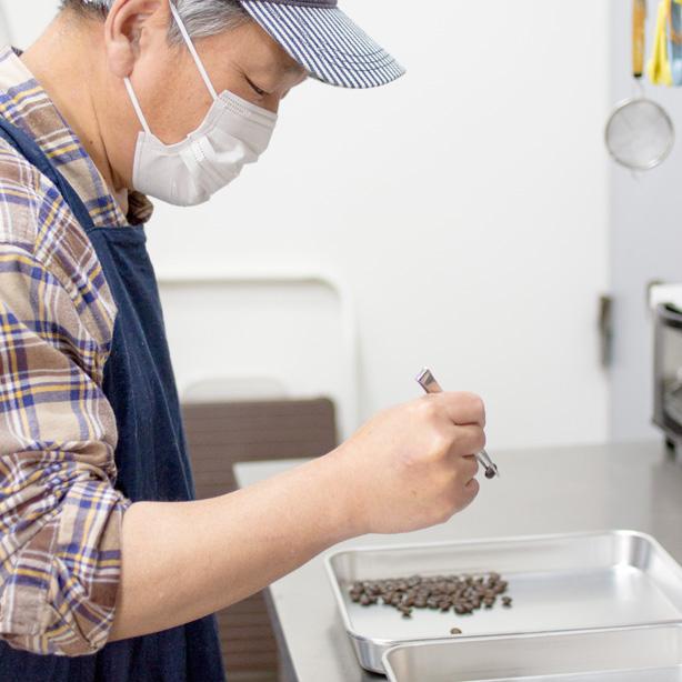 コーヒー豆の選別中写真
